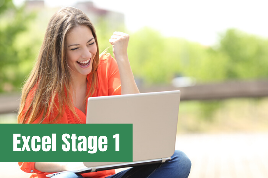 Excel Stage 1 course